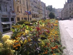 Karlovy Vary 4